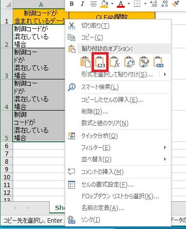 コピー&ペーストで元の値から制御コードを削除した画像