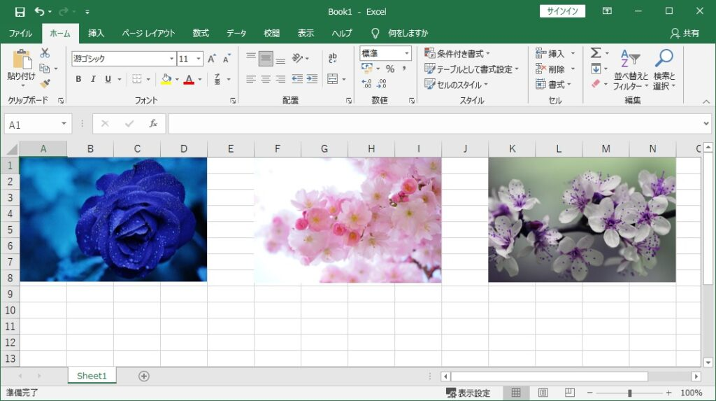 画像が挿入されているExcelファイルの画像
